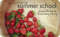 Simple Summer School - our homeschool plan