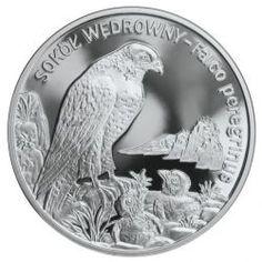 Inwestycje alternatywne - zarabianie dzięki kolekcji Rare Names, Peregrine Falcon, Brand It, Coins, Wildlife, Silver, Poland, Rooms, Peregrine