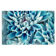 Photographic Print: Photo Illustration of Abstract Flower Petals in Blue by Annmarie Young : Summer Flowers, Blue Flowers, Flower Prints, Flower Art, Art Flowers, Dog Food Container, Floral Wall Art, Flower Backgrounds, Nature Prints