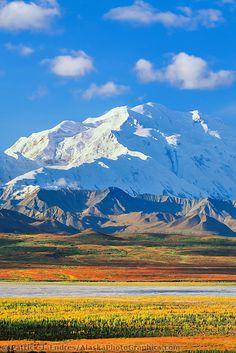 McKinley, Denali National Park Alaska The most beautiful park ever! Landscape Photos, Landscape Paintings, Landscape Photography, Nature Photography, Places To Travel, Places To See, Visit Alaska, Alaska Travel, Mountain Landscape