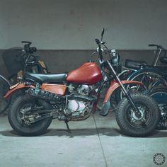 5812098915_31ebcd69a4_o[4] | Shimobros' Honda R&P CY50 goodh… | Flickr