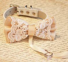 Ivory Dog Bow Tie, Dog ring bearer, Pet Wedding accessory, Pet lovers, Vintage wedding, Boho Wedding ideas
