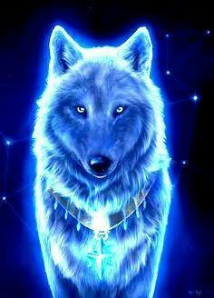 Cute Cat Wallpaper, Wolf Wallpaper, Animal Wallpaper, Beautiful Wolves, Animals Beautiful, Cute Animals, Mythical Creatures Art, Fantasy Creatures, Wolf Artwork