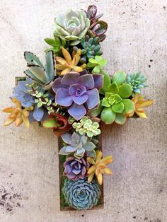 Succulent Living CROSS Hang or Stand by RootedInSucculents on Etsy