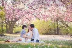Cherry blossom family session   Rockville, MD Newborn Baby and Family Photographer - Tonya Teran Photography