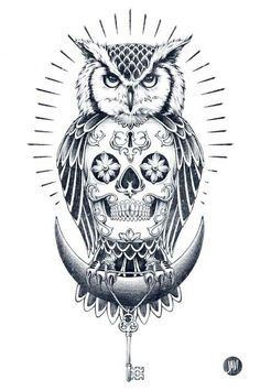 1000 images about owls and skulls on pinterest sugar for Owl with sugar skull tattoo