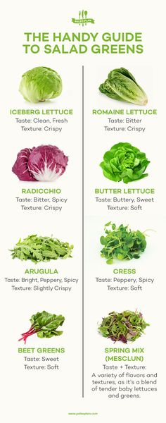 Salad greens arent just for salad. Youll be amazed at what you can do with the many varietals of lettuce and greens. Salad greens arent just for salad. Youll be amazed at what you can do with the many varietals of lettuce and greens. Paleo Salad Recipes, Salad Dressing Recipes, Healthy Recipes, Whole30 Recipes, Healthy Tips, Healthy Salads, Healthy Eating, Healthy Food, Portobello Mushroom Recipes