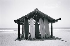 Black and white surf boards Surf Shack, Beach Shack, Transformers, Big Wave Surfing, Surf House, Big Waves, Beach Bum, Blue Beach, Island Life