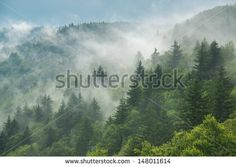 Clouds are rolling through after the rain in the Great Smoky Mountains National Park in Western North Carolina. - stock photo