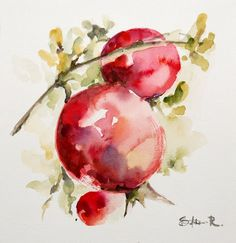 Original Watercolor Painting. Red Pomegranates by CanotStop, $64.00