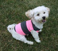 summer dog tank top, pink puppy clothes, pink dog tshirt, dachshund clothes, chihuahua clothes, dog tee shirt, pink dog coat, pink pug coat