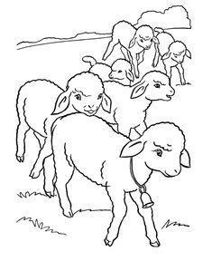 Easter Lamb Coloring page | a flock of little lambs all in a row