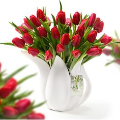 Tulip watering-can