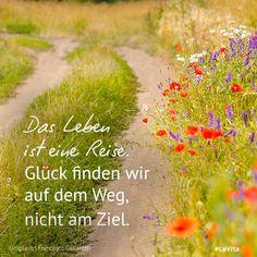 www.lavita.de