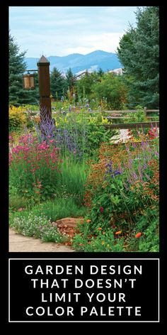 Textural interest and shades of green may be the rage in sophisticated gardens, but I still crave the excitement of floral Technicolor.