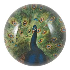John Derian Company Inc — Peacock Close-up