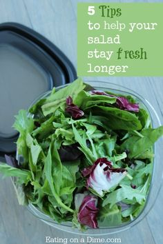 How to Keep Salad Fresh much longer! These are some very easy tips that you can do to keep that lettuce from going bad before you can eat it.
