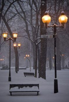 snowy christmas park