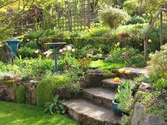 Lovely terraced garden. A little smaller scale in our yard could work to get that slope eliminated.