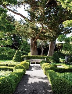 Boxwood hedges and topiaries border a garden path at a Bay Area residence.