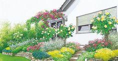 Eine höher gelegene Terrasse bietet tolle Einblicke in den Garten. Die mit Mauern abgestützten Randbeete sind allerdings wegen ihrer extremen Standortbedingungen längst nicht für alle Pflanzen geeignet. Wir präsentieren Ihnen dazu zwei Gestaltungsideen für Terrassenbeete. Mit Pflanzplänen als PDF zum Herunterladen und Ausdrucken.