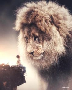 Lion of the Tribe of Judah Lion Pictures, Jesus Pictures, Surreal Photos, Surreal Art, Photographs, Giant Animals, Lion Love, Photo Animaliere, Lion Wallpaper