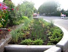 Example of a curn extension in Portland, USA used in an urbainsed area to absorb rainwater and reduce runoff. Green Street, Biophilic Architecture, Landscape Architecture, Vertical Farming, Water Pollution, Water Management, Rain Garden, Urban Planning, Portland Usa