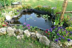 Jardin > Déco Jardin > Les plus beaux bassins