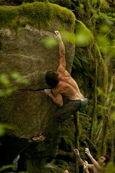 #Arms Rocking Climbing #Forest /LineOfBeauty #AY