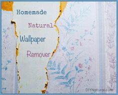 How to Make (and Use) Natural Wallpaper Remover Ingredients  ⅓ cup of lemon juice 2 cups white vinegar 2 cups water
