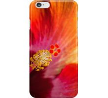 Colorful with Hibiskus iPhone Case/Skin