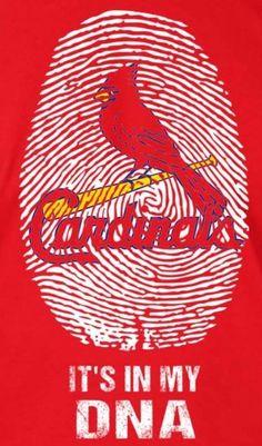 Cardinals Baseball St Louis Baseball, St Louis Cardinals Baseball, Stl Cardinals, Baseball Crafts, Baseball Quotes, Baseball Stuff, Buster Posey, Chicago White Sox, Atlanta Braves