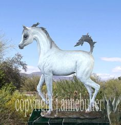 SHE'S MY DIVA  Arabian Filly Bronze by JANNEBUTLERBRONZES on Etsy, $6000.00