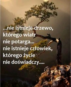 Motto, Jealousy, Personal Development, Texts, Poems, Thoughts, Quotes, Life, Polish Sayings
