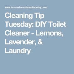 Cleaning Tip Tuesday: DIY Toilet Cleaner - Lemons, Lavender, & Laundry
