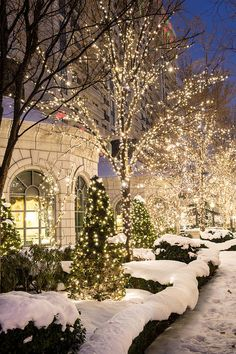 White Christmas lights sparkling *Hodgins Realty Group Inc* Mississauga Real Estate * Christmas Decorations *