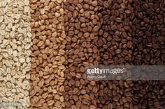 roasted coffee beans - Google Search