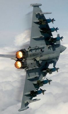 Eurofighter Typhoon [480 x 800]