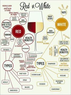 Have a step up the next time you come to a wine tasting at Riverwood Winery with the wine chart! Guide Vin, Wine Guide, Wine Tasting Party, Wine Parties, Wein Poster, Wine Infographic, Wine Chart, Wine Facts, Wine Education
