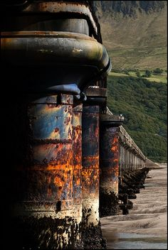 Rusting armour for effect, it's not fun to watch the rust grow. Rust Never Sleeps, Rust In Peace, Peeling Paint, Rusted Metal, Back To Nature, Abstract Photography, Wabi Sabi, Abandoned Places, Belle Photo