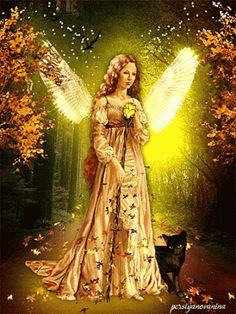 ANGEL OF FALL ~~~