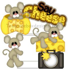 Say Cheese - Treasure Box Designs Patterns & Cutting Files (SVG,WPC,GSD,DXF,AI,JPEG)