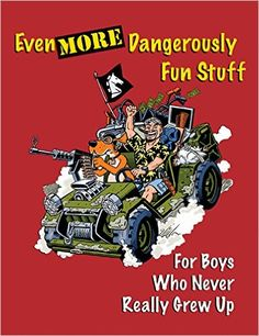 2010.Even More Dangerously Fun Stuff: For Boys Who Never Really Grew Up: Various: 9781581607390: Amazon.com: Books