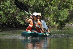 Kayaking through the mangrove reserve of Isla Juan venado with greenpathways.com on the kayaking and boozey bbq tour