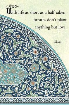 With life as short as a half taken breath, don't plant anything but love. —Rumi