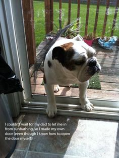 Hall of Shame | BaggyBulldogs