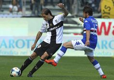 Gabriel Alejandro Paletta of Parma FC is challenged by Gianluca Sansone of UC Sampdoria during the Serie A match between Parma FC and UC Sam...