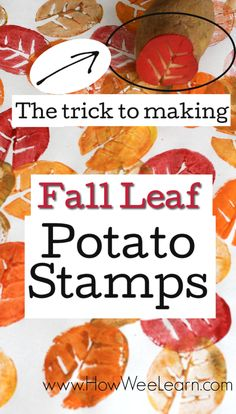 A Fall Leaf Potato Stamp - How Wee Learn Such a great craft for kids for this Fall. Make a Fall Leaf potato stamp! Love the trick in here to ensure it turns out each and every time! So EASY! Fall Activities For Toddlers, Creative Activities For Kids, Fall Preschool, Preschool Crafts, Fall Art For Toddlers, Preschool Education, Homeschool Kindergarten, Easy Fall Crafts, Crafts For Kids To Make