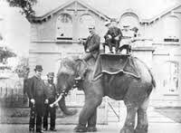 Dublin Zoo a long time ago