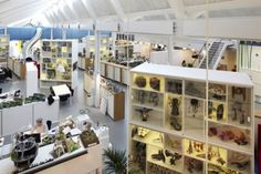 Awesome LEGO office in Denmark- this is the future of work